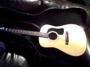 Acoustic Guitar - WASHBURN