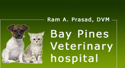 Bay Pines Veterinary Hospital - http://baypinespetdoc.com